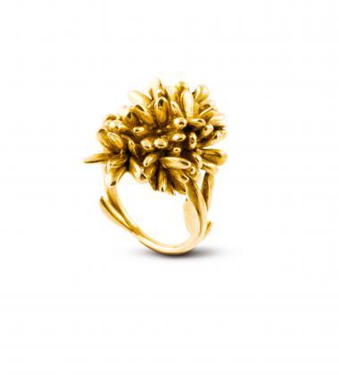 Christa Reniers + Millenium ring